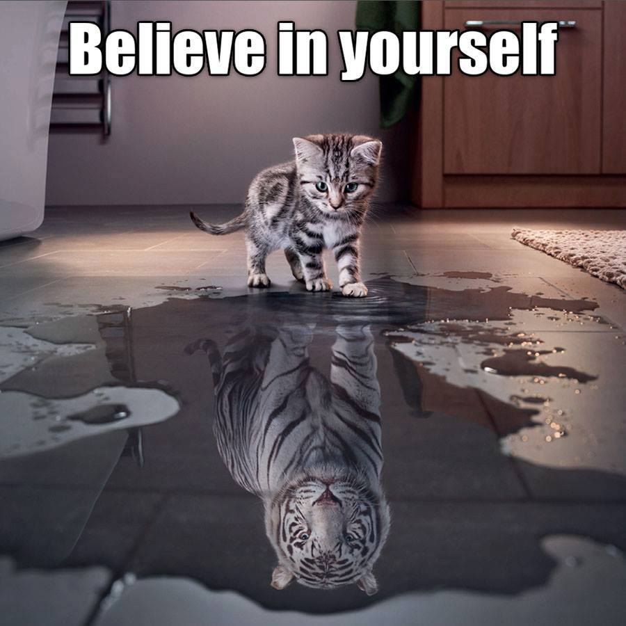 inspiration - believe