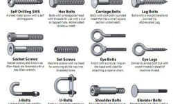 Fastener Type Graphic