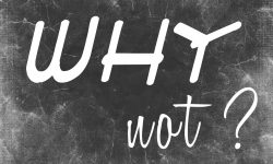 Why Not - Inspirational Image